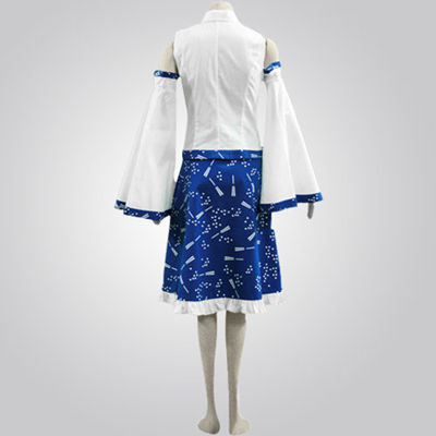 Touhou Project Blue And White Cosplay Costume